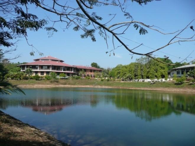 Panditārama Forest Meditation Center.