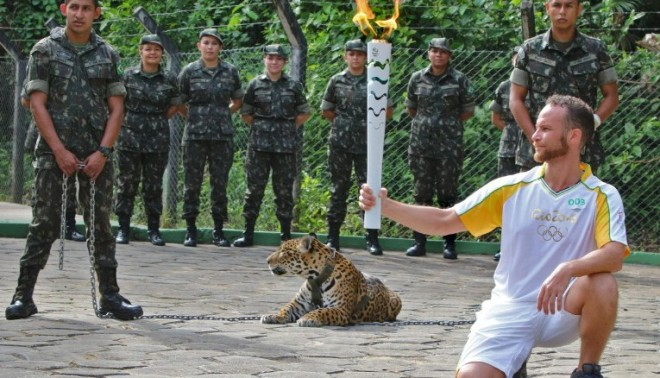 What has a chained jaguar got to do with the Olympic Games?