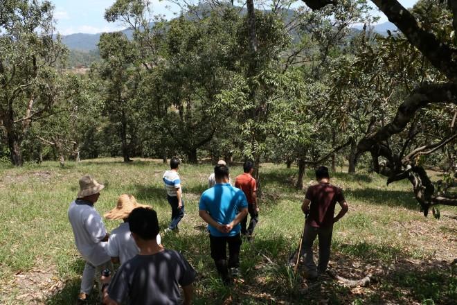 Surveying the site of 'Wisdom Park'.
